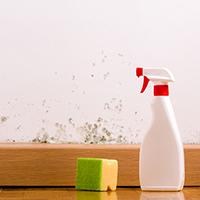 รู้ไว้ใช้ได้จริง-กับวิธีกำจัดเชื้อราบนผนัง